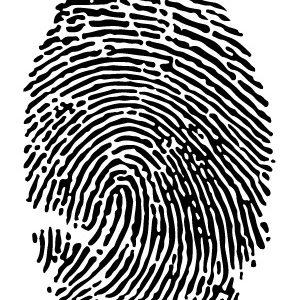 Brent&Jess digital fingerprint editing